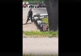 В соцсетях появилось видео, как омский дворник выбрасывает пыль на газон