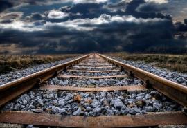 Собаку разорвало поездом: ее привязали к путям Омск – Новосибирск
