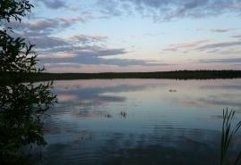 Рыбак и отец двух детей, пропавший в Омской области полгода назад, найден мертвым