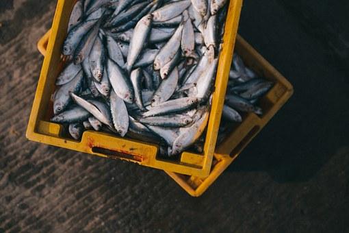 В Башкирии на Инзере задержан рыбак-браконьер