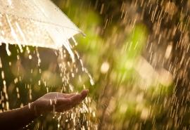 В Омск придет тепло, но дожди останутся