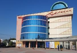 Омскому театру «Арлекин» назначили временного руководителя
