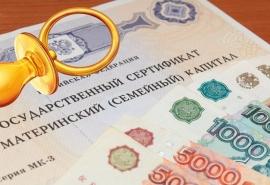 Два афериста выманили у омских мамочек 11 миллионов рублей