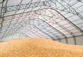 «Омскому продовольствию» выдадут из федерального бюджета субсидию на 4 миллиона рублей