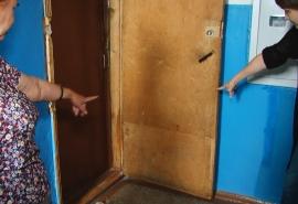 Жители омского дома ополчились против соседки, устроившей скотный двор в квартире