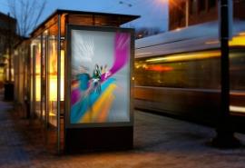 В Омске через аукцион разыграют места под рекламные стенды на остановках