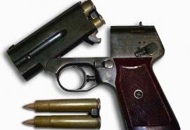 В Омске заведующую хранилищем ракетно-артиллерийского вооружения наказали за кражу пистолета для спецслужб