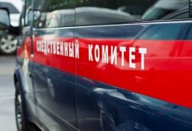 Стали известны подробности гибели пропавшей в Омске трехлетней девочки