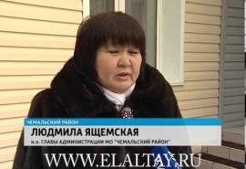 СМИ: депутатка на Алтае гоняла омских туристов с угрозами и матом