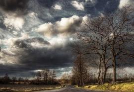 Лето закончилось: осень в Омской области начнется со скверной погоды