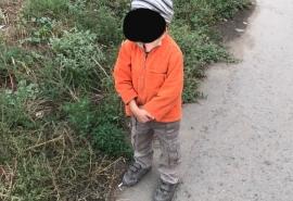 В Омске трехлетний мальчик отправился на прогулку в одиночестве