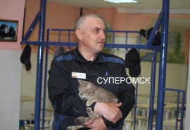 «Крымского диверсанта» из омской колонии вернули на Украину