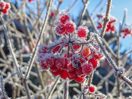 В Башкирии синоптики предупреждают о заморозках