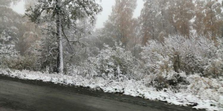 Жители Башкирии делятся фотографиями выпавшего снега