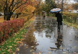 Новая неделя начнется в Омске с дождя