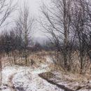 Неделя в Омской области начнется с капризной погоды