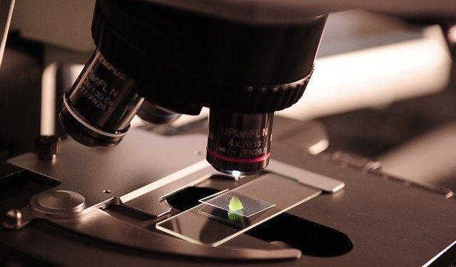 Создано новое средство для борьбы с раком поджелудочной железы