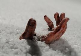 На севере Омской области на берегу Иртыша нашли замерзший труп пенсионера