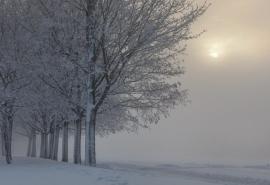 Морозы придут в Омск вместе с туманом