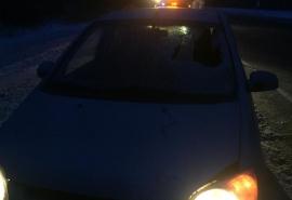 Установлена личность пешехода, которого насмерть сбили на дороге Омск – Черлак