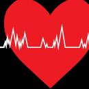 Искусственный легочный клапан подстроился под растущее сердце