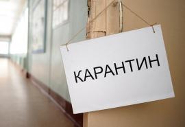 Омские школы могут закрыть на карантин из-за коронавируса
