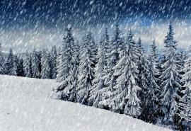 После праздничных выходных в Омск вернется снегопад
