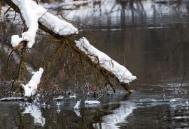 Названа дата начала потопа в Омске