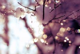 Снег, дождь и порывистый ветер: синоптики рассказали о погоде в Омске на выходные