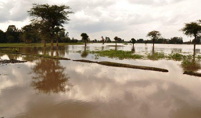 Стало известно, когда начнется паводок в Башкирии