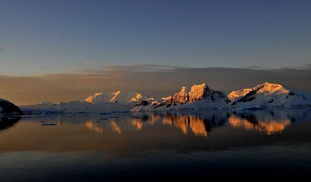 Древние тропические леса нашли в Антарктиде