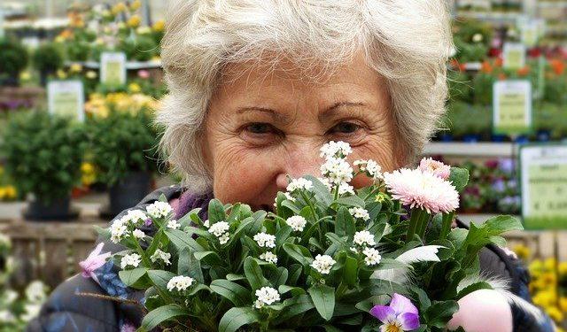 В России могут повысить пенсии. Мера коснется не всех