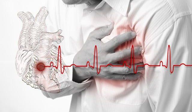 Найден белок, безопасно восстанавливающий сердце после инфаркта
