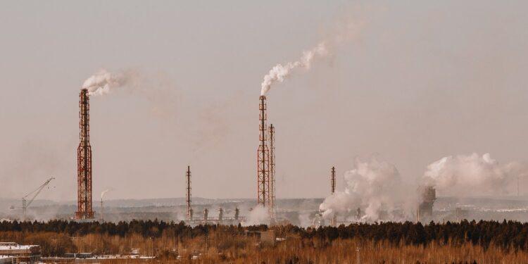 Назван продукт, защищающий от воздействия грязного воздуха