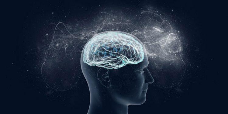 Ученые назвали оптимальный объем кислорода для хорошей работы мозга