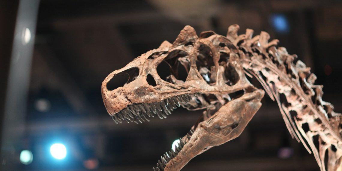 Останки нового вида динозавров обнаружены у берегов Великобритании