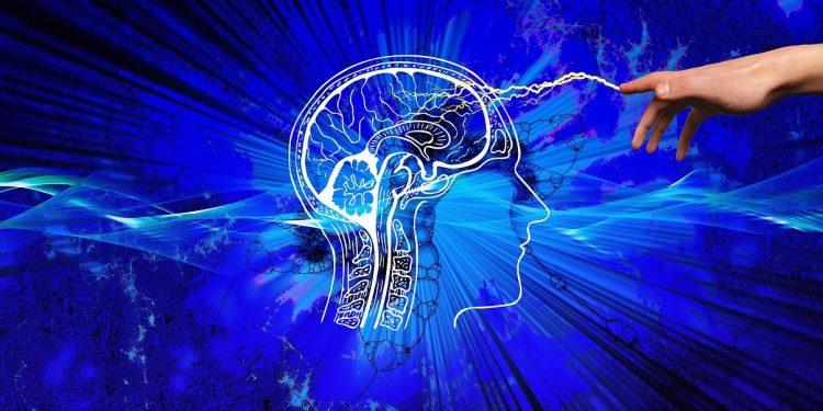 Эксперты определили, когда наступает смерть мозга