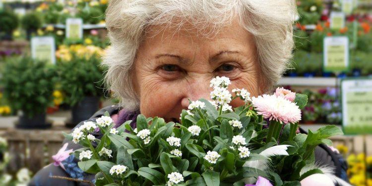 Более 9 тыс. руб. В России готовят новое повышение пенсий