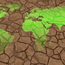 Глобальную длительную засуху предсказали ученые
