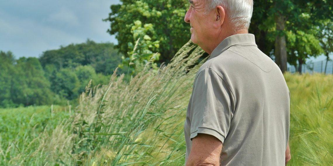 В России предложили вернуть индексацию выплат работающим пенсионерам