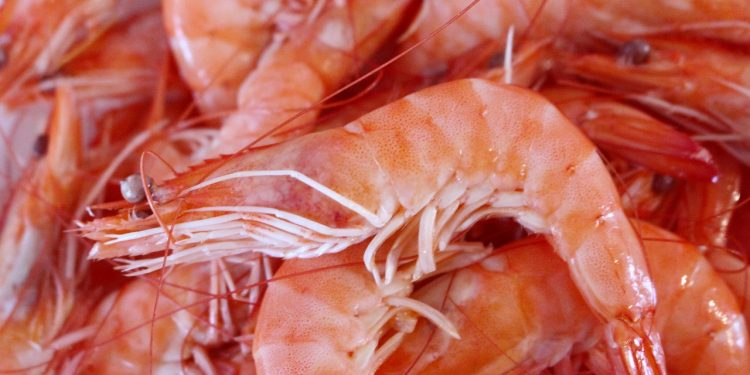 Китайские власти обнаружили коронавирус в морепродуктах из России