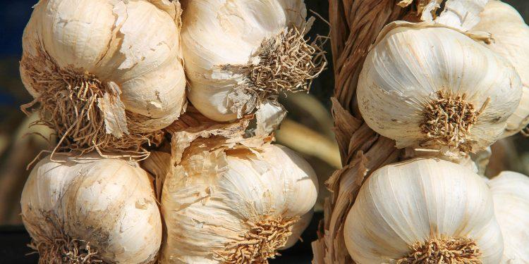 Один из главных овощей на кухне назвали «лекарством» от лишнего сахара и холестерина