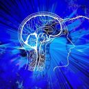Мозг человека постепенно уменьшается в объеме