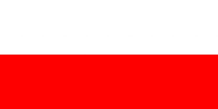 Польша может уничтожить российские военные корабли за 7 минут