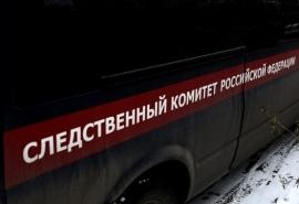 В новогоднюю ночь в Омске произошло жестокое убийство подростка