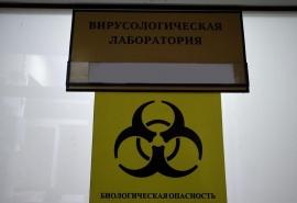 Названы районы Омской области, где ожидаются носители смертельного вируса в 2021 году