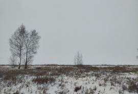 В Омской области и почти всей России ожидается ультраполярное вторжение