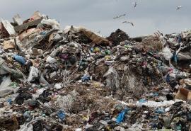 Житель Колосовского района судится с Минприроды из-за омского мусора