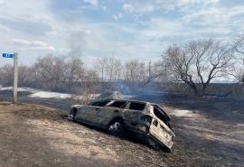 Жарить шашлыки в Омской области могут запретить уже с 12 апреля